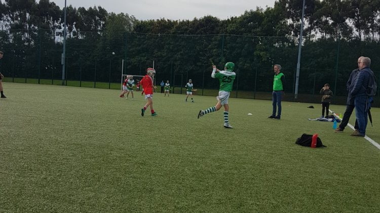 Under 10's Hurling - O'Tooles Vs Fingallians & Clontarf - O